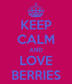 We Love Berries
