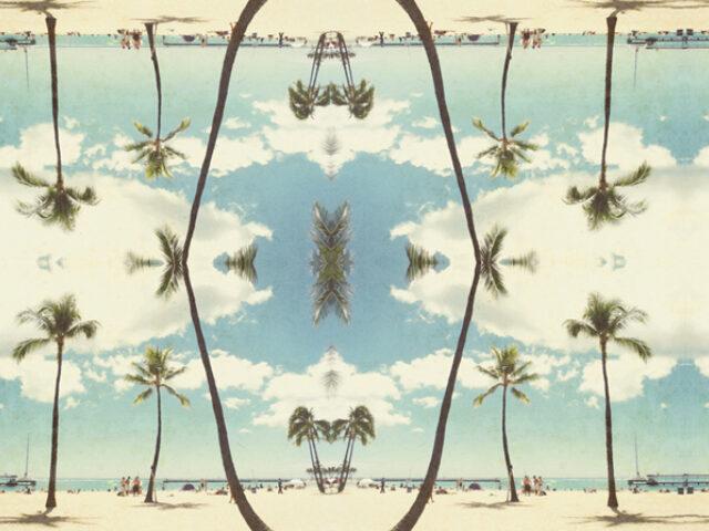 Venice Beach: il paradiso dell'onda perfetta